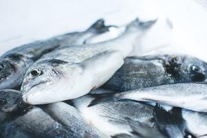 Productions, importations et exportations de poisson et de viande de 2003 à 2012